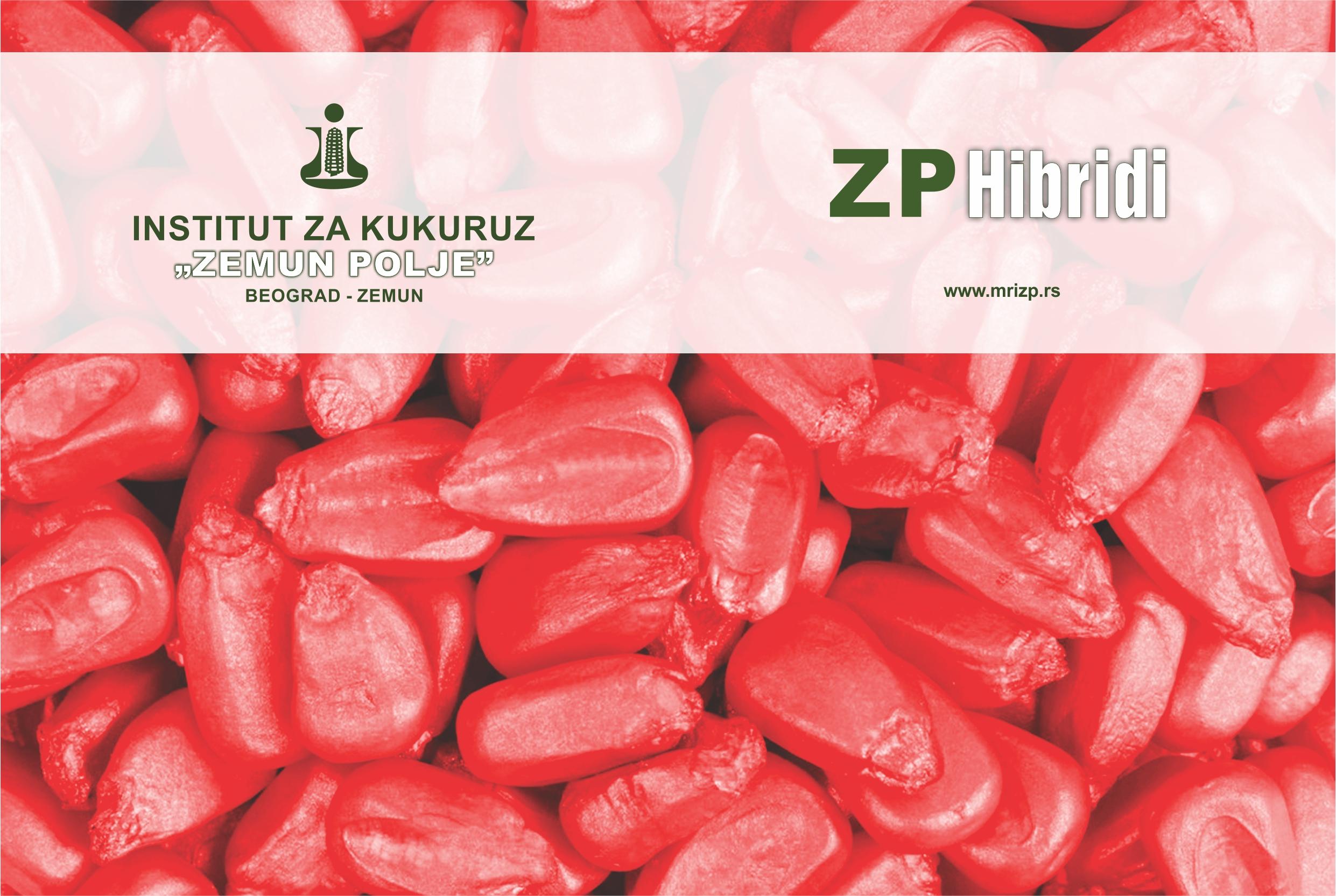 PROFESIONALNI TRETMAN SEMENA ZP HIBRIDA KUKURUZA
