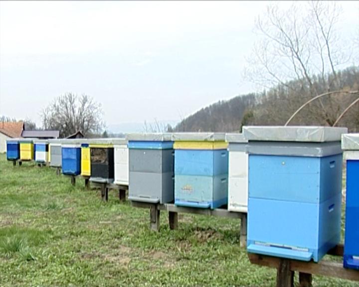 Dani pčelarstva