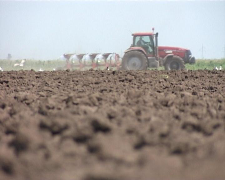 Agrosavet za 24.04.2013. - Zaštita uljarica