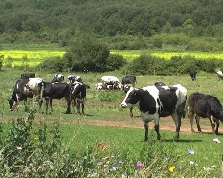 Većina poljoprivrednici