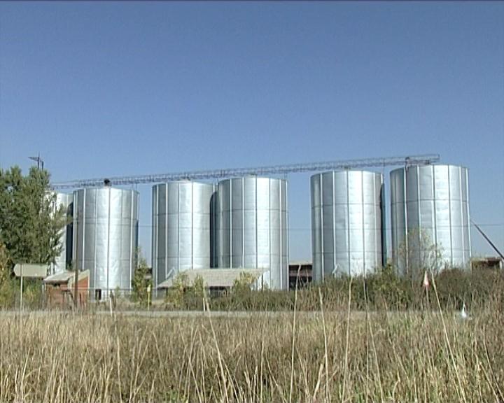Ponovo slobodan izvoz pšenice u Makedoniju