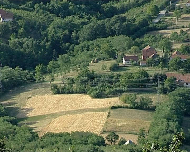Fond za razvoj poljoprivrede