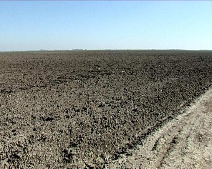 Hiljade neobrađenih hektara