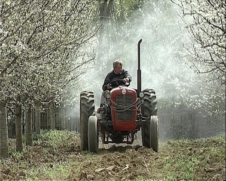 Koliko su bezbedni pesticidi?