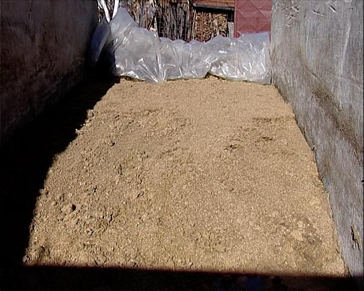 Pivski treber u ishrani stoke