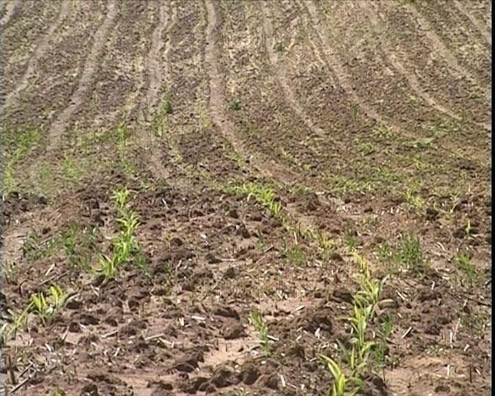 Ministarstvo poljoprivrede uručilo je novčanu pomoć i opremu