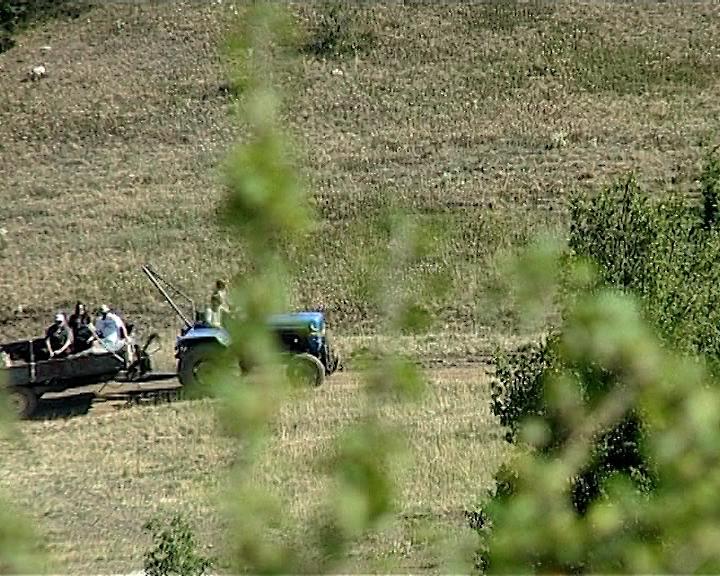 Oživljavanje zadruga u Srbiji
