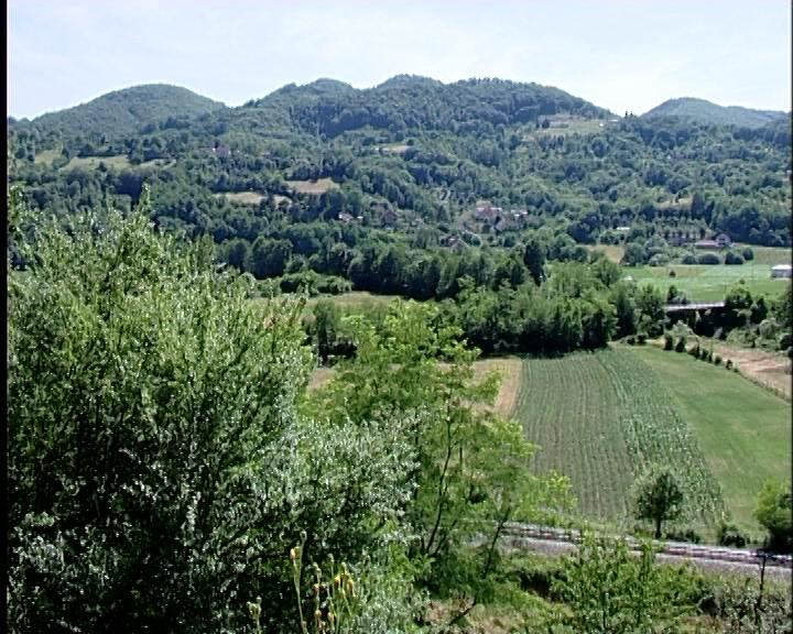 Pošumljavanje 2 hiljade hektara