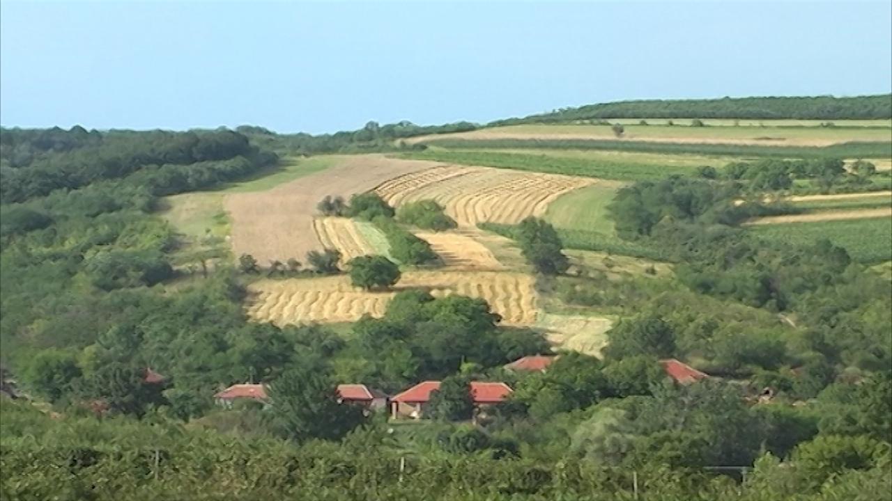 Poljoprivredna udruženja kao spas