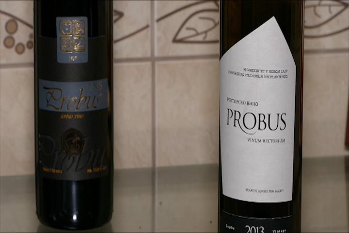 Vino se pravi u vinogradu