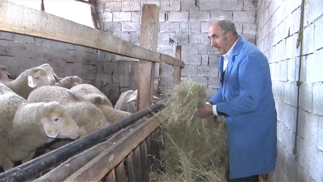 Sokobanja podstiče razvoj stočarstva