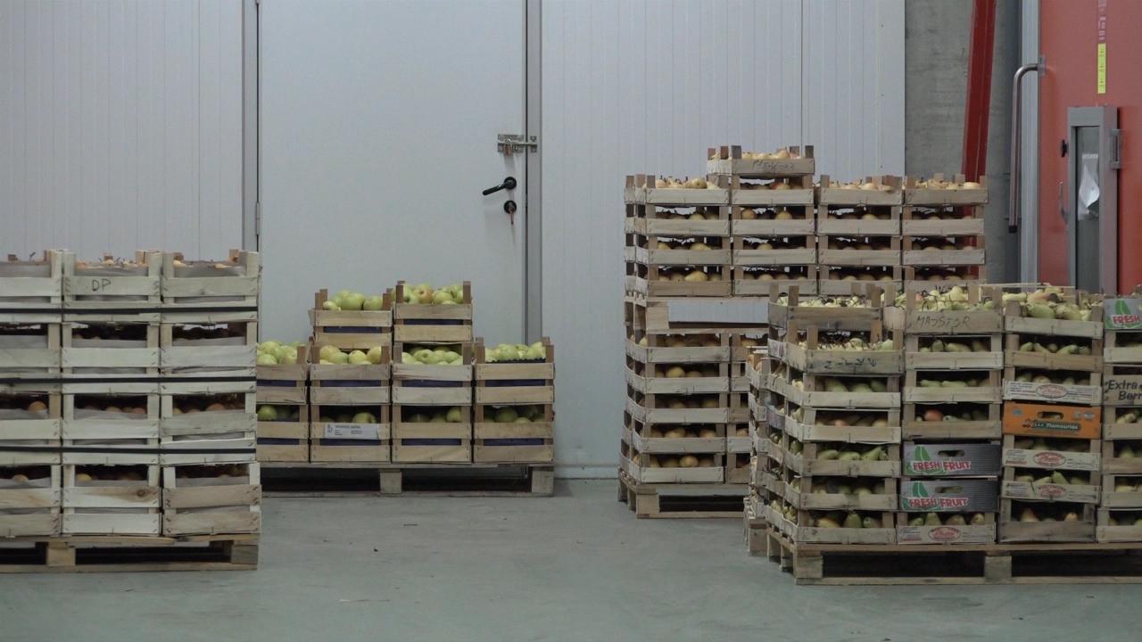 Nova pravila za izvoz voća i povrća