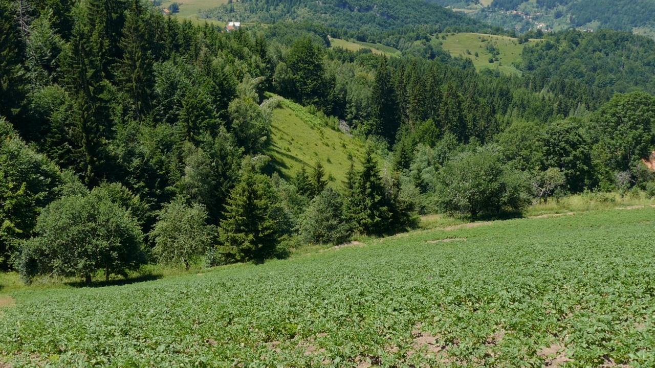 """""""Održiva poljoprivreda, održiva inkluzija, održivo selo"""""""