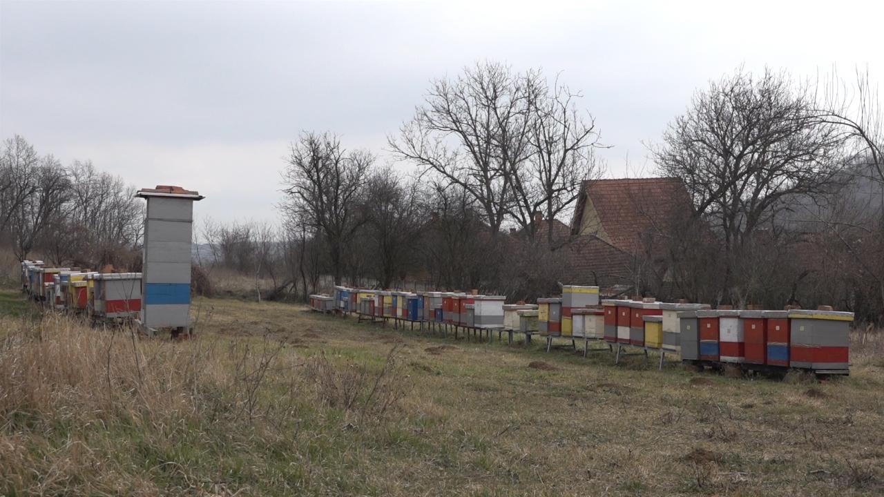 Gradnja  fabrike meda u Rači počinje krajem marta