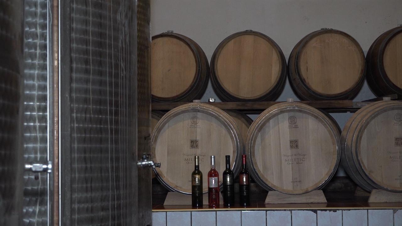 Vidljiv trend opadanja izvoza vina