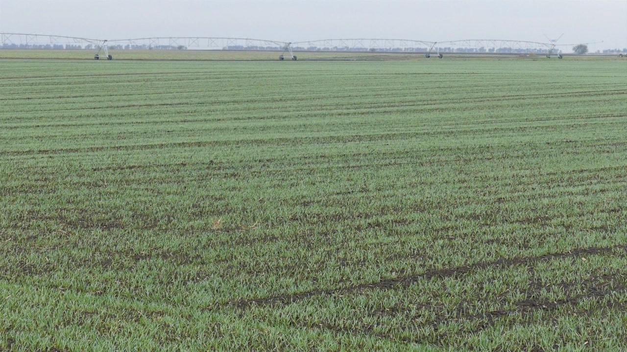 Pre prihrane obavezna analiza zemljišta
