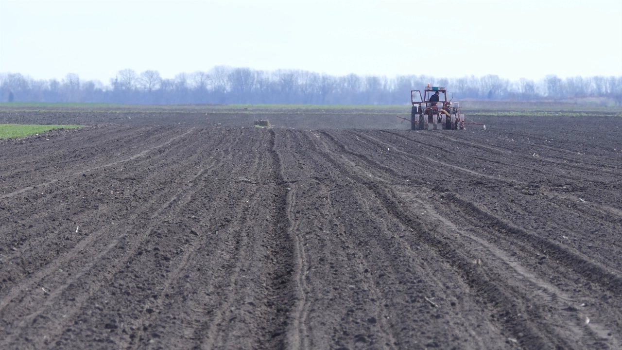 Njive u Vojvodini od 1.000 do 18.000 evra po hektaru