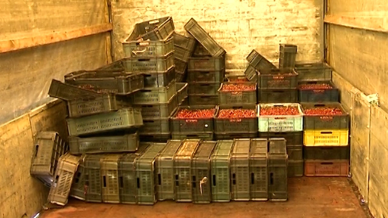 Potreban zakon o tržištu poljoprivrednih proizvoda