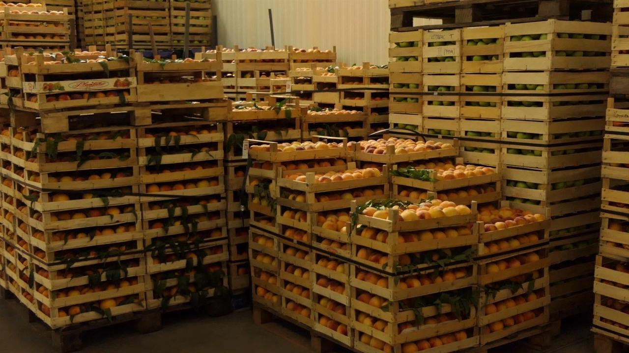 Grupacija proizvođača svežeg i zamrznutog voća Rasinskog okruga