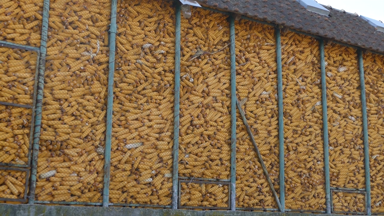 Banatski ratari o problemima obavestili ministra poljoprivrede