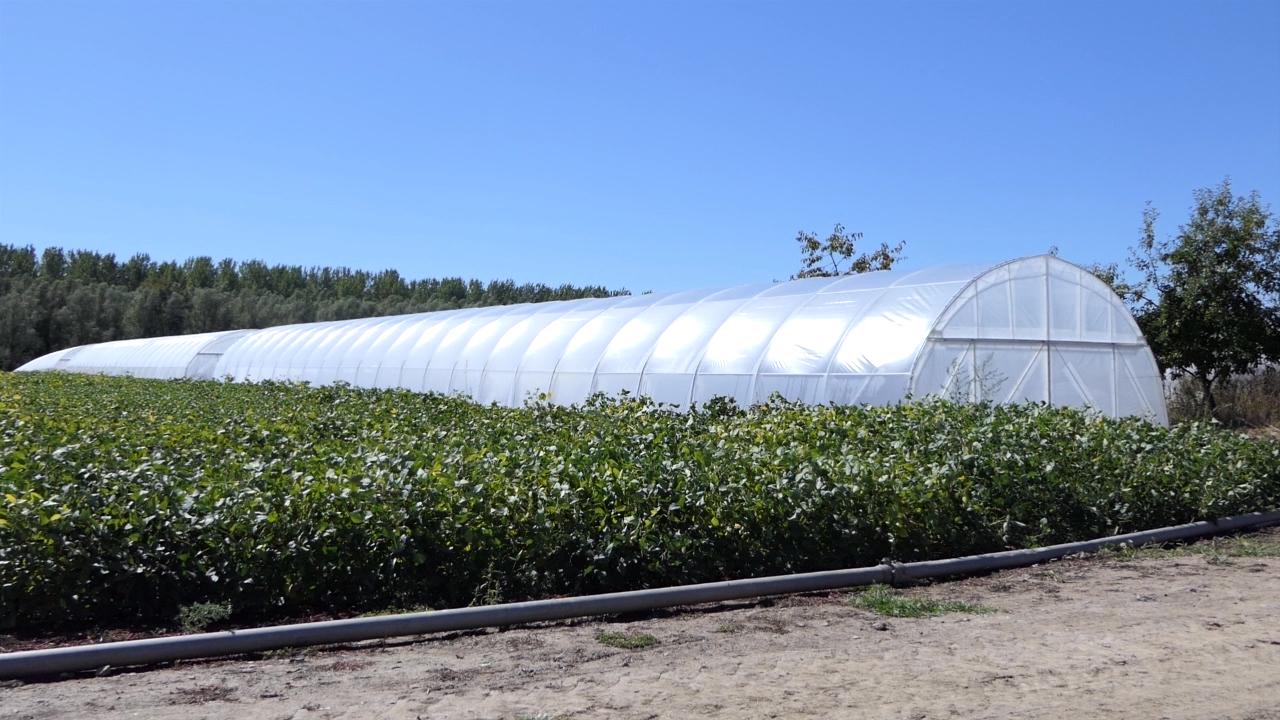 Grad Novi Pazar nastaviće da pomaže poljoprivrednicima