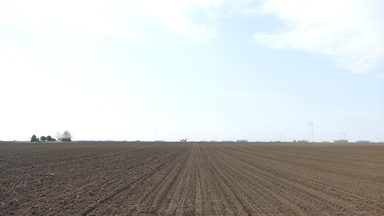 Ukrupnjavanje parcela štedi oko 4.000 hiljade dinara po hektaru