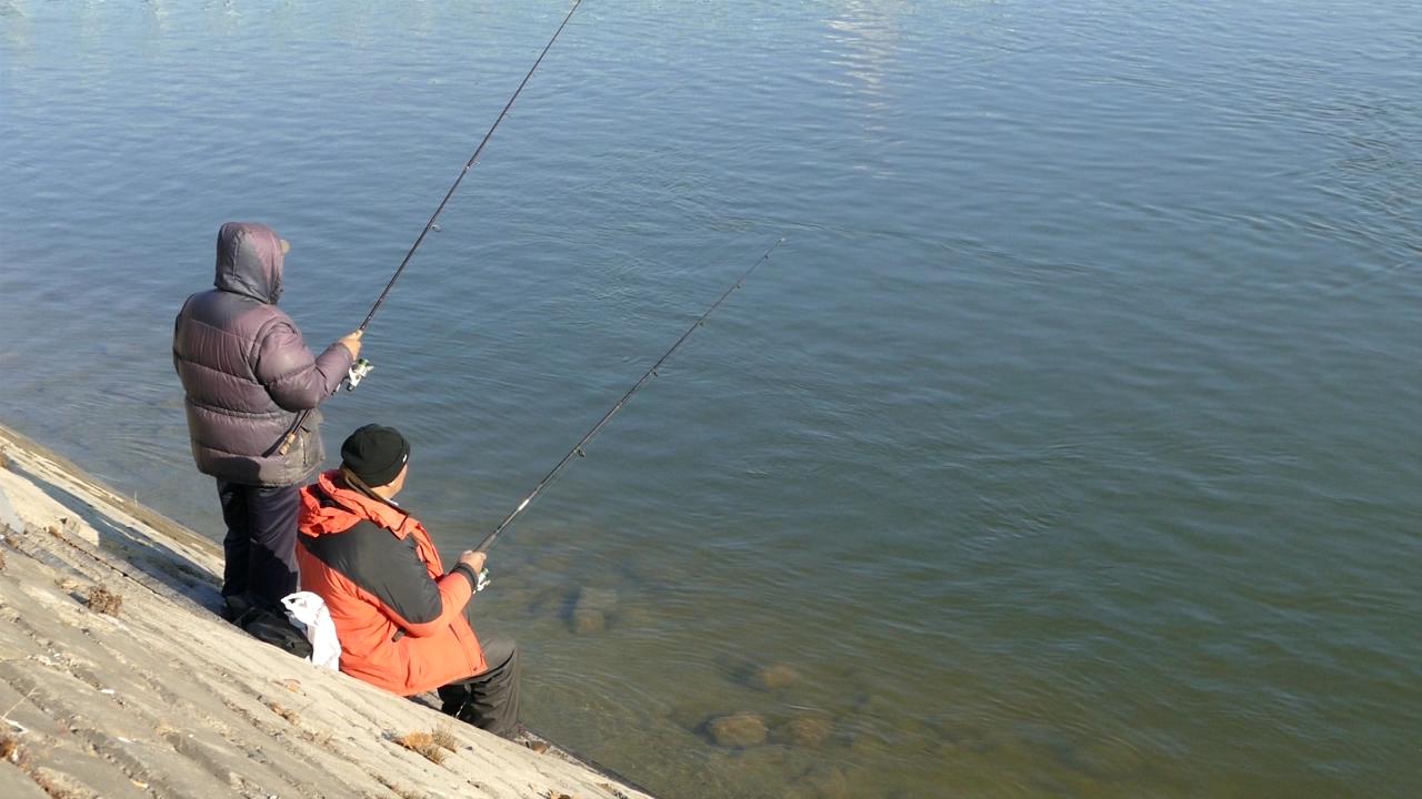 Poribljavanjem kanala Vrbas – Bezdan i Banatska Palanka – Novi Bečej