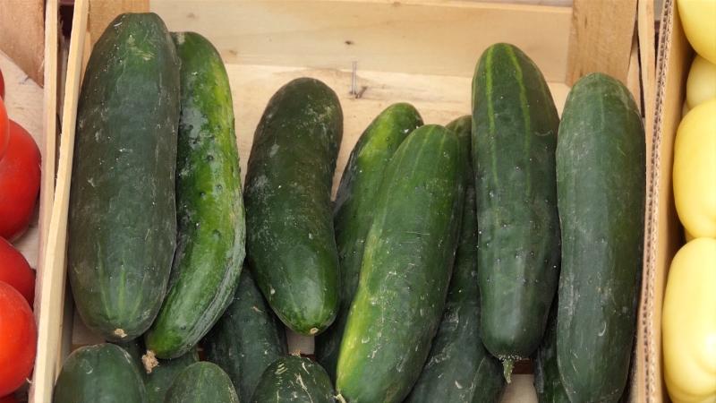 Savetovanje o savremenoj proizvodnji povrća, dvadeseti put!