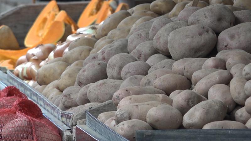 Povrće značajno skuplje nego lane