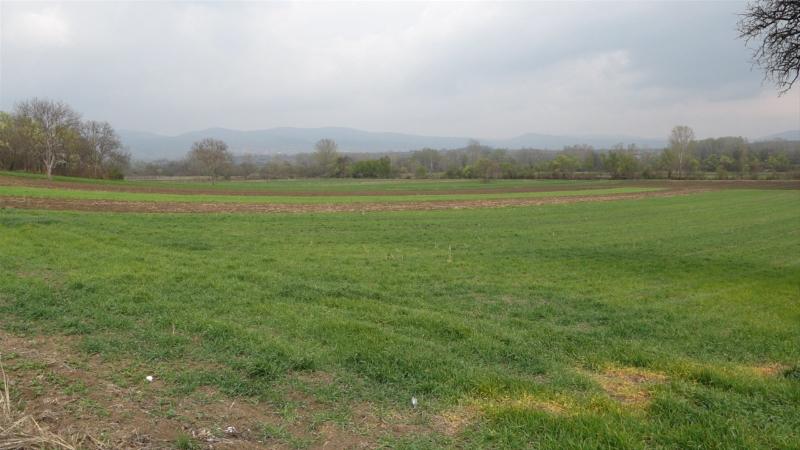 Podrška agraru iz budžeta opštine Paraćin