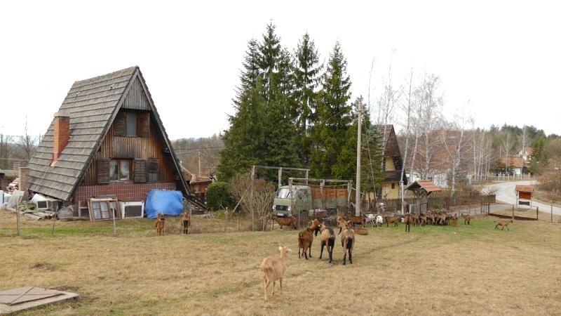 Organska proizvodnja - šansa za vlasnike manjih parcela