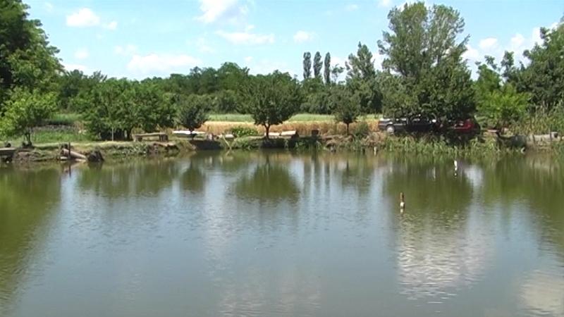Šaranski ribnjak, na  jugu