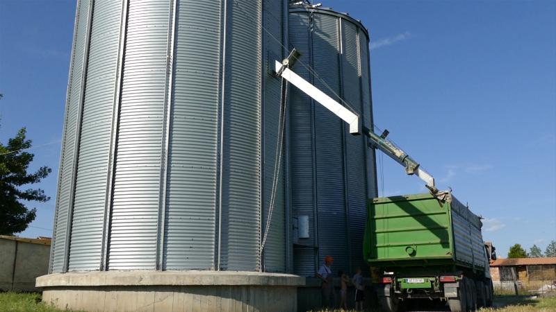 Državna nabavka pšenice mogla bi da stvori novu dinamiku