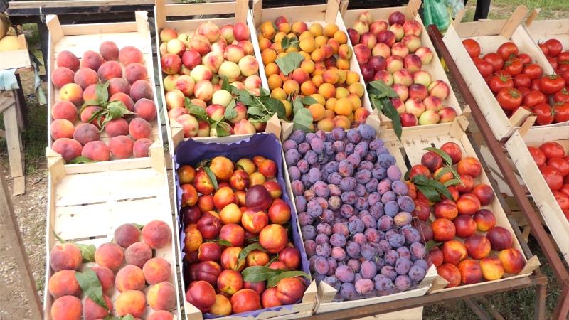 Uz sve carine i troškove prevoza inostrano voće i povrće jeftinije od domaćeg