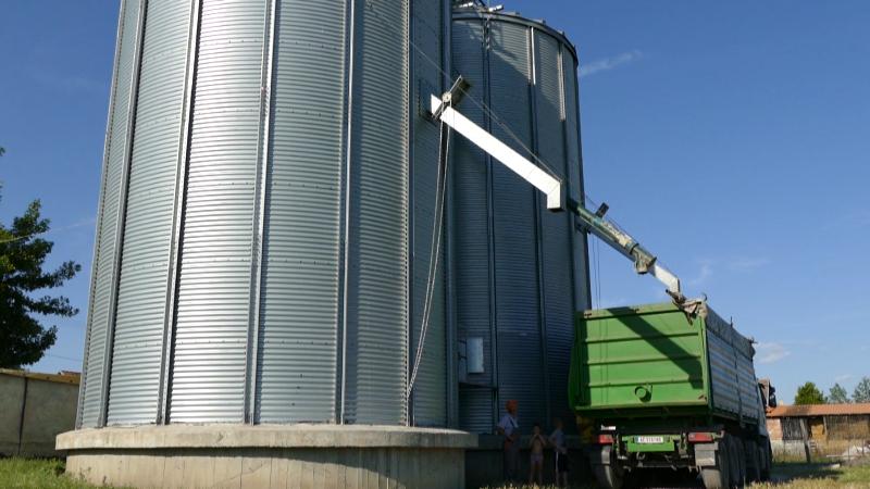 Cilj države da se pšenica zaštiti i razvrsta po kvalitetu