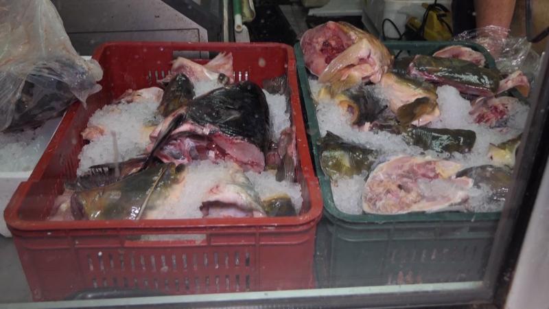 Inspekcija u toku godine uništila 6.386 kilograma ribe i ribljih proizvoda