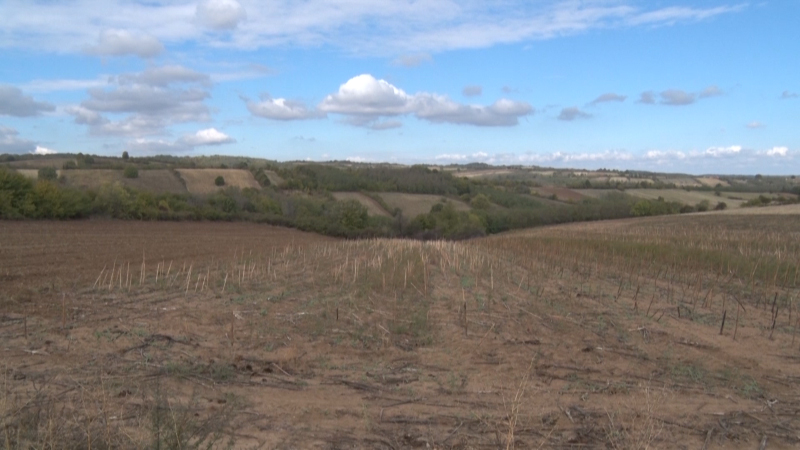 Napušteno državno zemljište veliki potencijal za razvoj agrarnog sektora