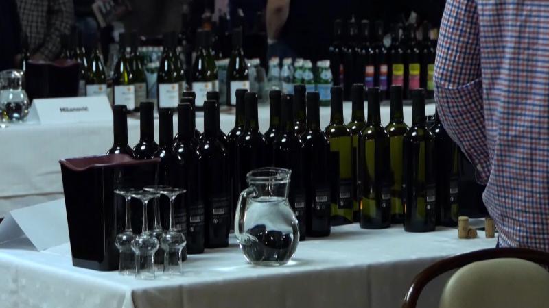 Članovi žirija odabrali najbolja vina u 4 kategorije