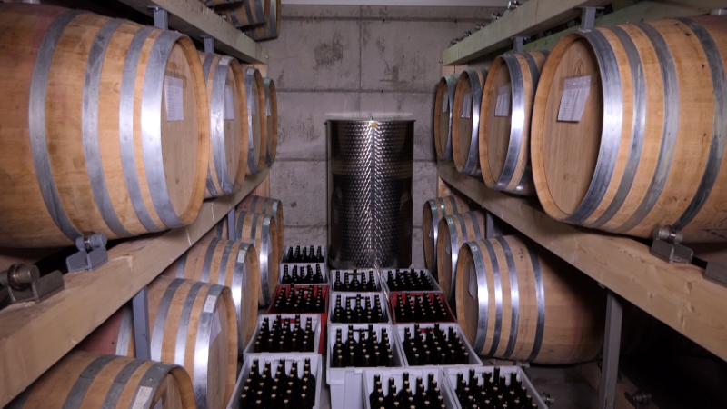 """""""Rapsodija 2015"""" najbolja u konkurenciji 113 vina"""
