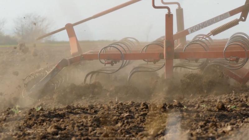 Na području Srema i Banata 15 % površina već zasejano