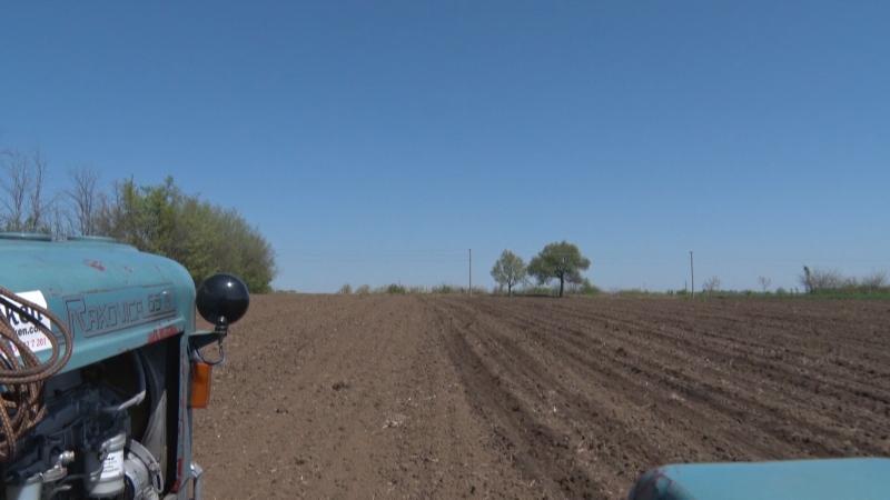 Nedostatak vlage u zemljištu