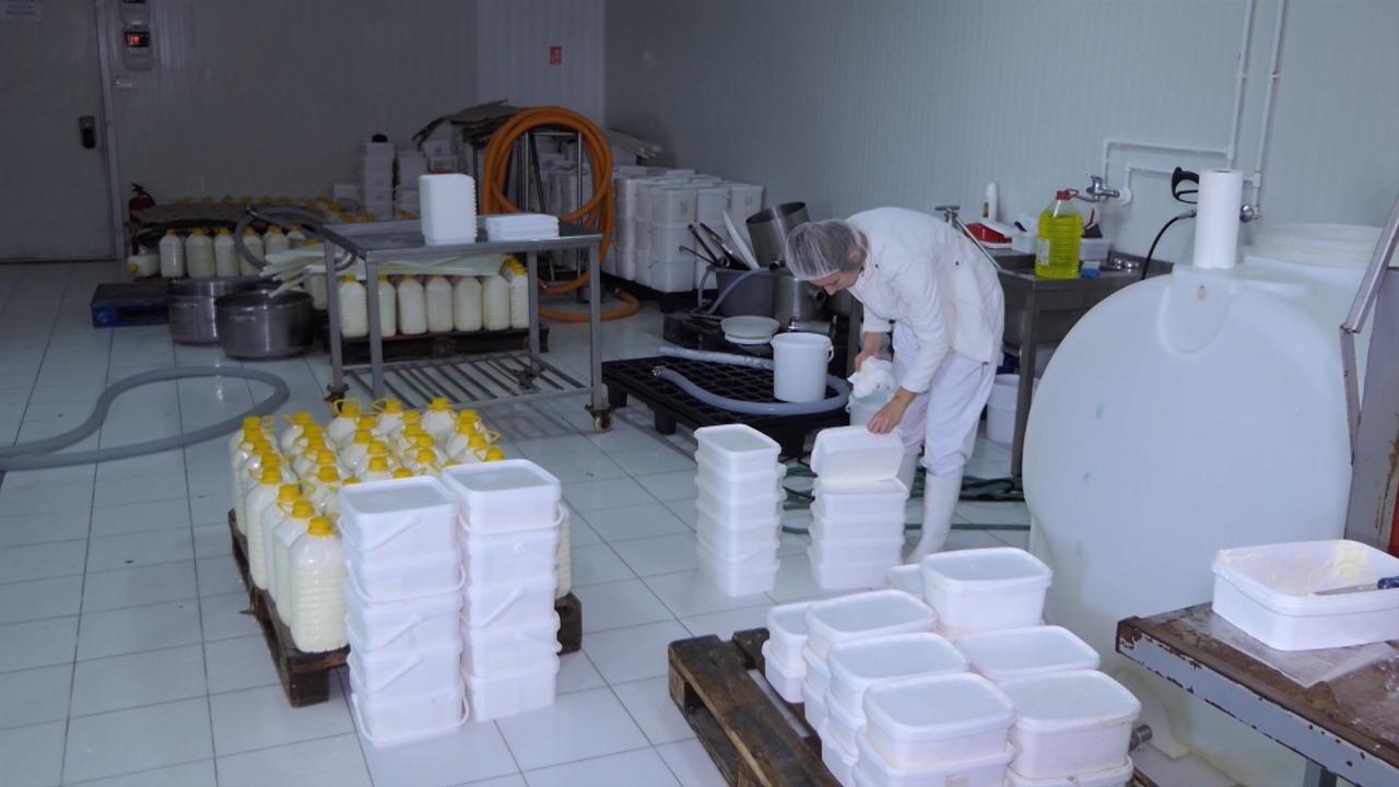 Šansa u proizvodnji sireva sa zaštićenim geografskim poreklom