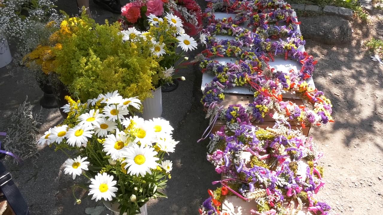 U vence ivanjskog cveća stavlja se i beli luk