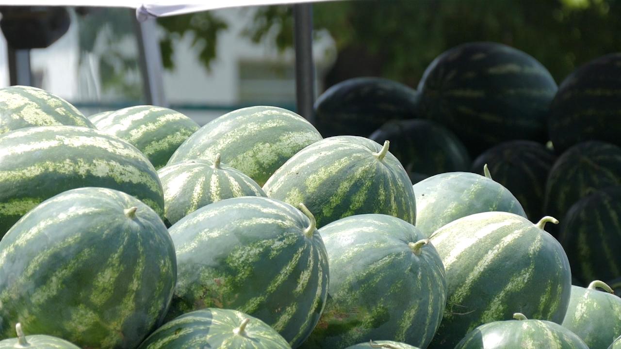 Kod proizvođača lubenice 25 dinara