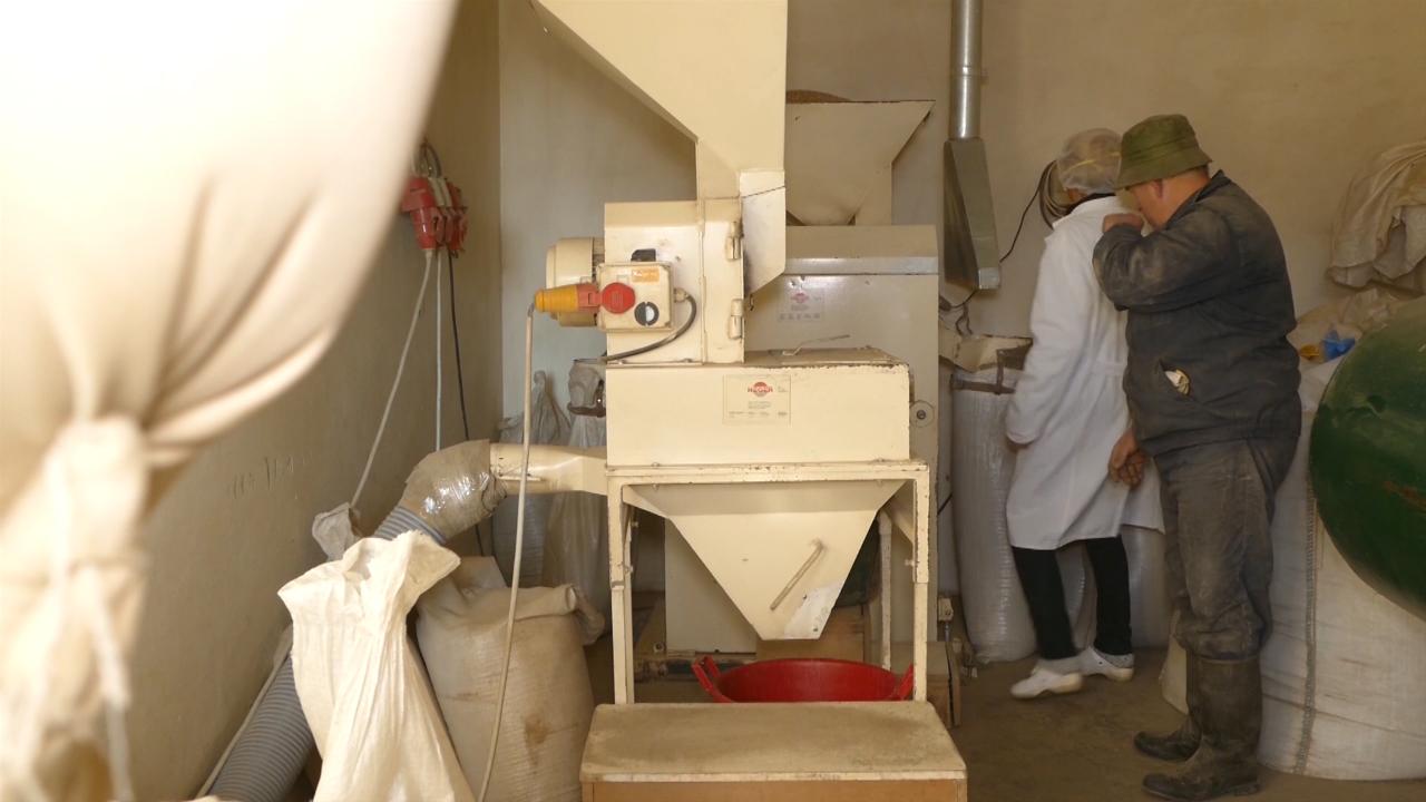 Mlinari traže bescarinski izvoz brašna u Tursku