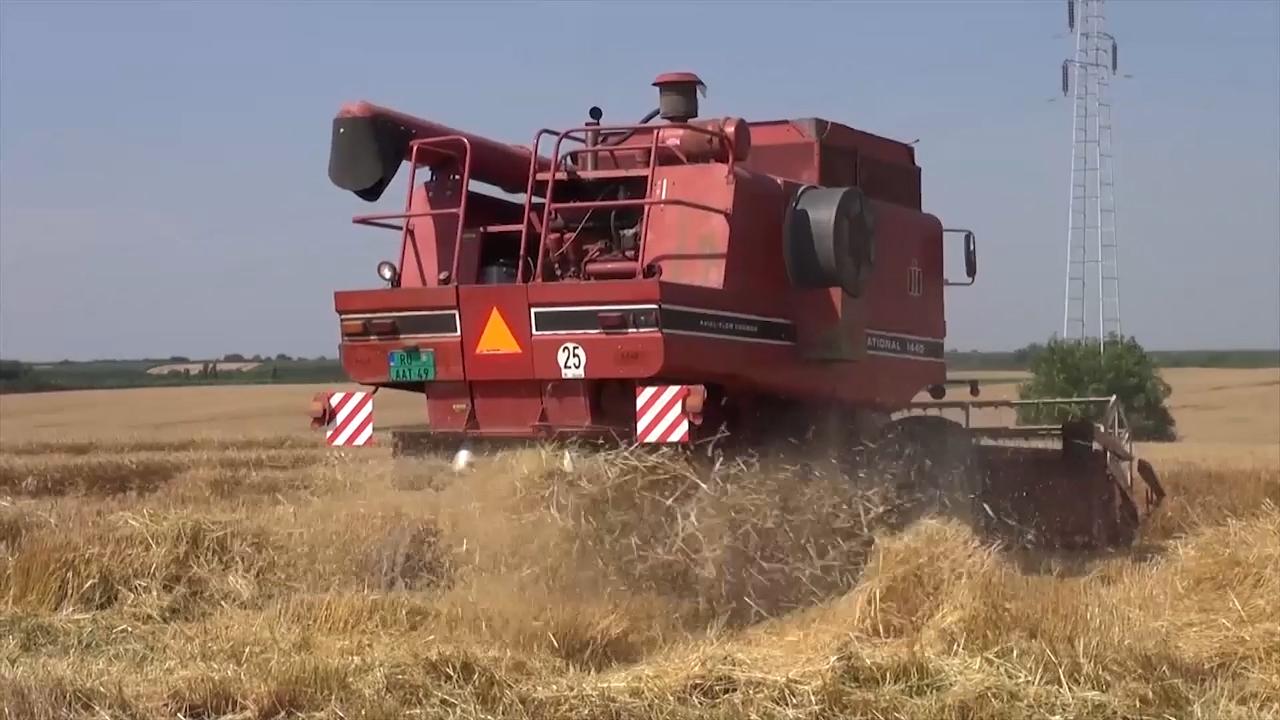 Ratari ove godine prihodovali u poljoprivrednoj proizvodnji