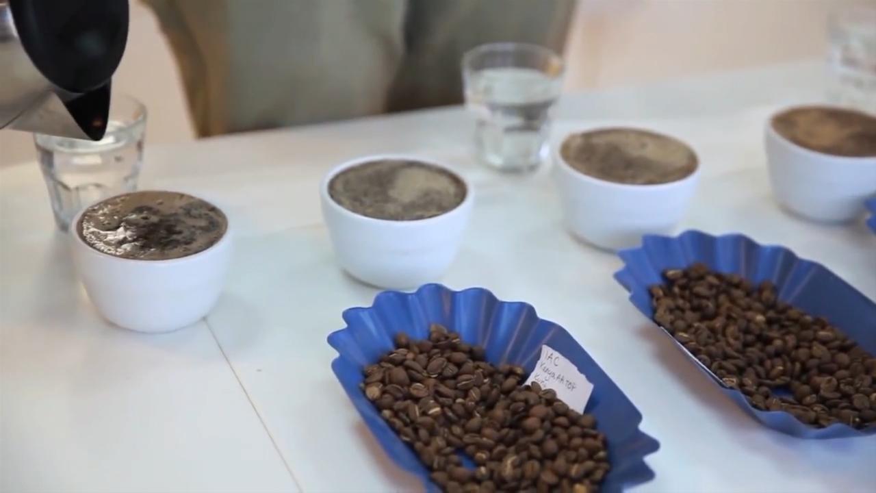 Novi pravilnik za bolji kvalitet kafe