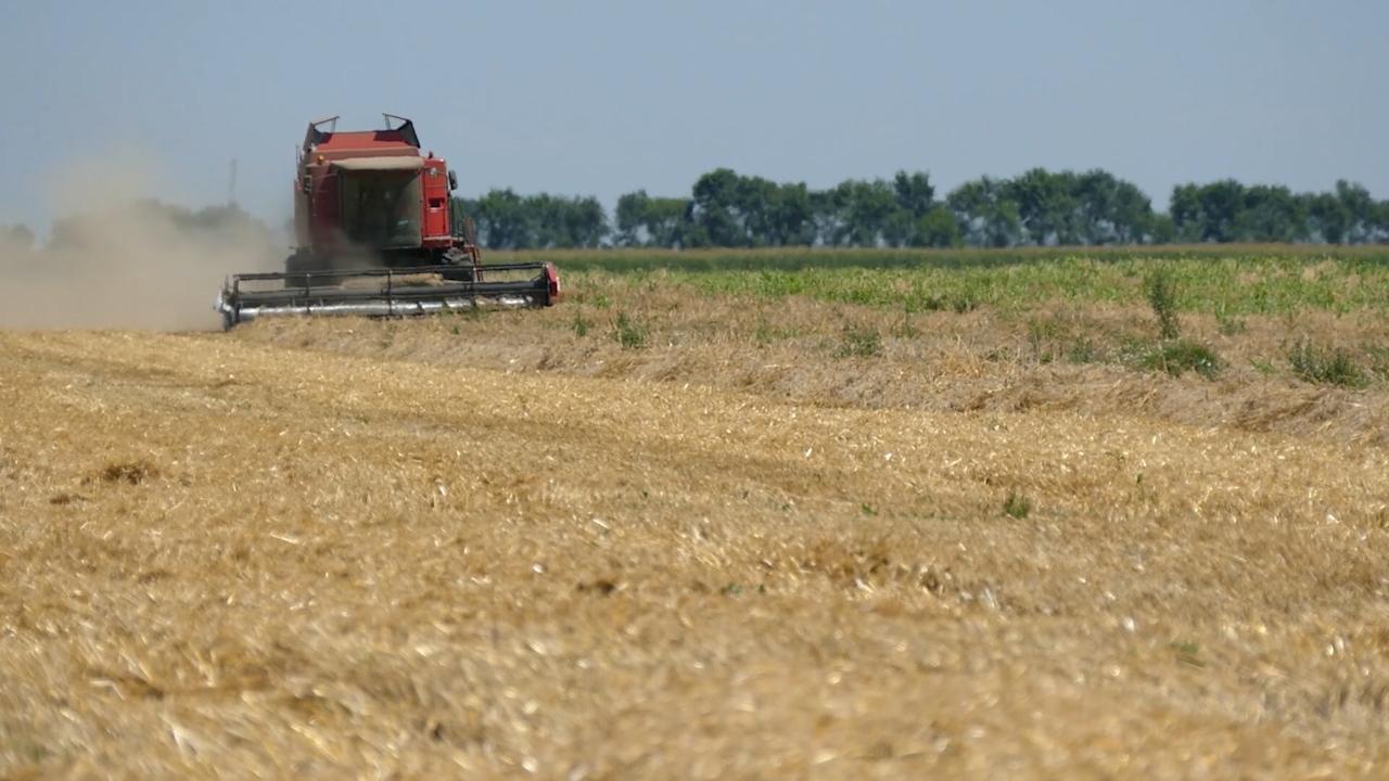 Uticaj (ne)vremena na poljoprivredu