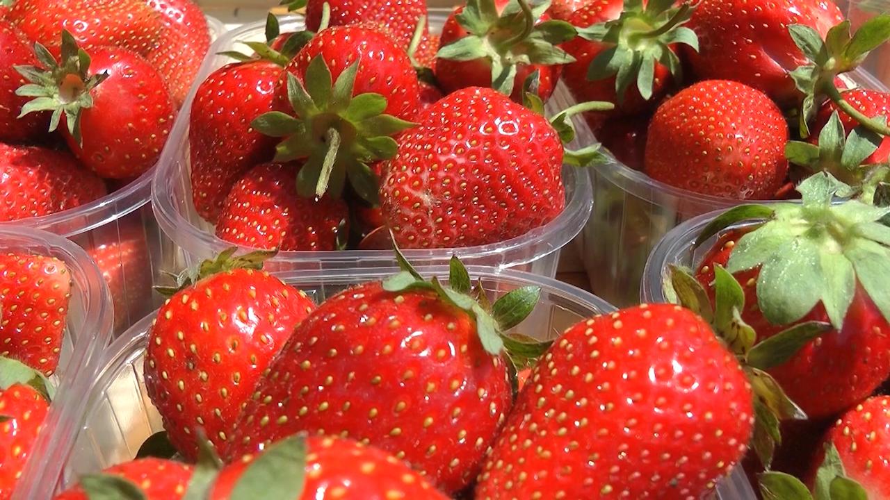 Trend poskupljenja nije primetan kod svih voćnih vrsta