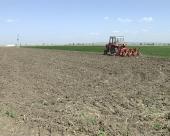 Hektar zemlje 15.000 evra